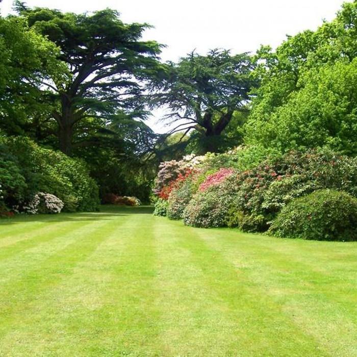 AYRL garden-services-landscape
